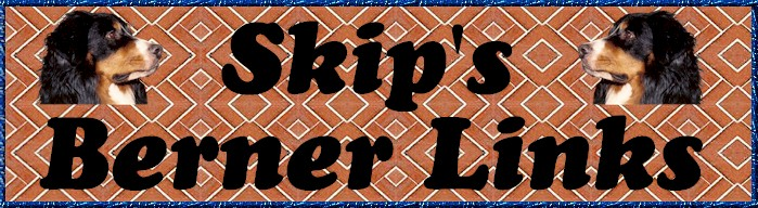 SKIP'S BERNER LINKS LOGO